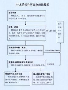申请砍伐树木申请书怎么写