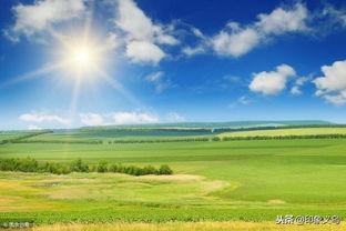 描写春天太阳的古诗词_描写春天的诗词