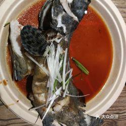 龙胆石斑鱼(哪里能看到龙胆石斑鱼)