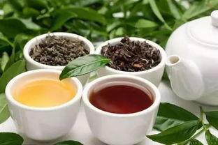 秋天喝什么茶好秋季喝茶首选乌龙茶降低胆固醇