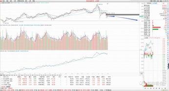股票行业板块、区域板块、概念板块的定义?