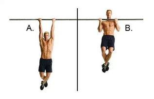引体向上能练腹肌吗引体向上能锻炼哪些肌肉