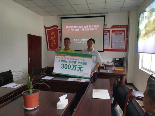 农村集体经济组织金融服务工作