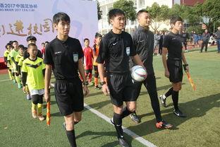 卫冕冠军出局,中超中甲频折戟,足协杯对中国足球意味几何