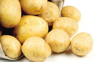 土豆长芽了还能吃吗