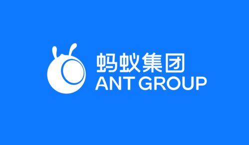 蚂蚁是什么意思中文