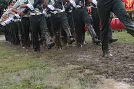 武警士官学校有哪些专业