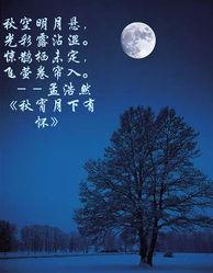 关于咏月的诗句或段落