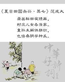 古诗词描述老妇人的诗
