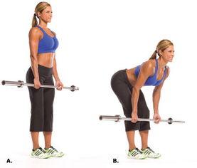 系统腿部的健身计划