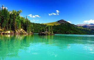 新疆旅游服务