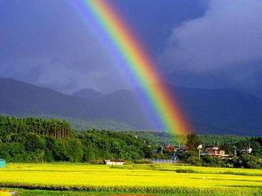 简笔画之雨后的彩虹