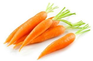 胡萝卜用英语怎么读