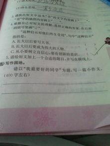 我的好同学100字作文