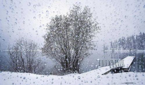 描写冬天雨的诗句_描写冬雨的诗词名句