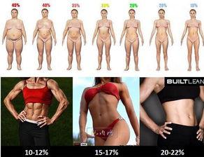 体 脂肪 率 女性