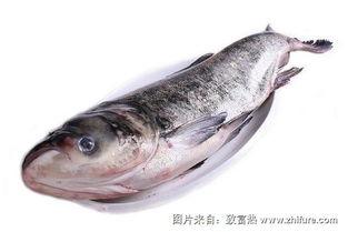 红烧大花鲢鱼的做法大全家常