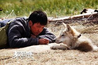 狼图腾 是关于精神病的故事