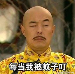 表情 张铁林皇阿玛互相伤害表情包大全下载地址 289手游网 表情