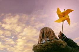 11月27日(公历)的生日花是(花占卜是什么意思)