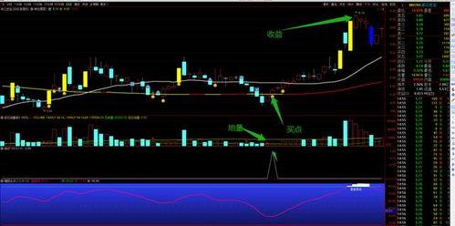运用震荡指标的股票分析