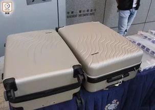 中国小伙从加拿大带了两箱行李回国,一下飞机就被抓,面临死刑这些东西千万别带回国