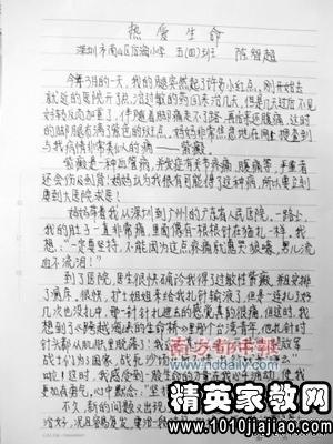 国庆节作文800字初中