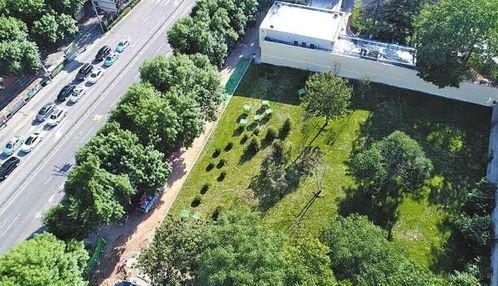 园林绿化施工基础知识