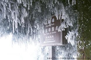 关于冬天的诗句1o首