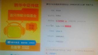 鵬華中證傳媒股票指數基金160629,值得買嗎? 會不會被套牢