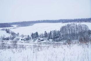 与冬天有关的古诗词15句