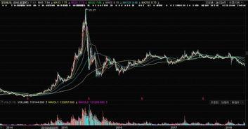000089深圳機場該股票前景怎么樣,會大幅度上漲么,可以長期持有么