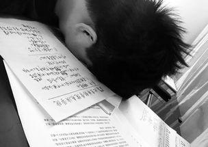 沉迷于毕业论文翟天临唯一一个因为论文上热搜的明星