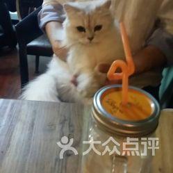 Li小姐的猫咪咖啡屋