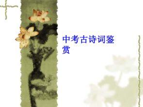 中考古诗词鉴赏多吗