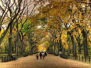 秋天对应的五行是