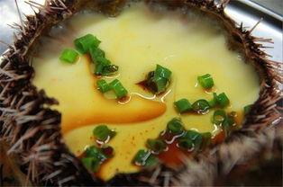 海胆蒸鸡蛋:5元一个