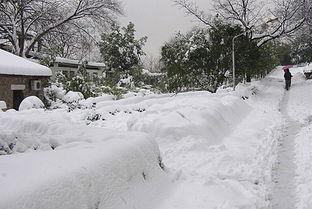 做梦梦见下了很大的雪