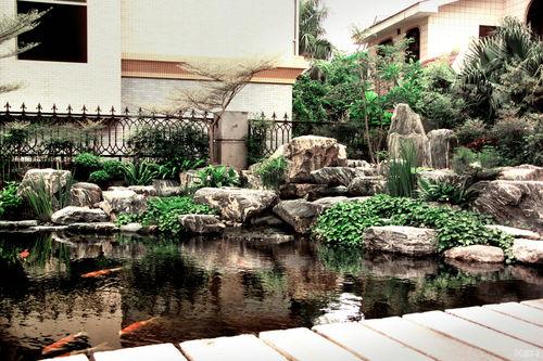 鱼池假山庭院的风水