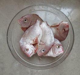 鲷鱼怎么做好吃又简单(鲷鱼两吃的做法步骤图)