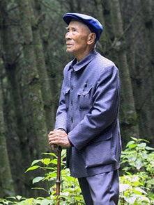 杨善洲:绿了荒山造福百姓的草鞋书记