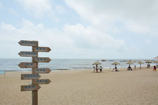 浪琴湾,夏天是海的季节