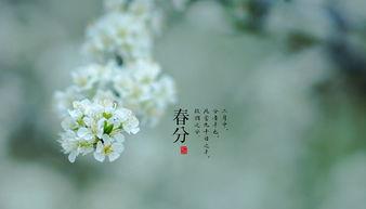 春分的诗句