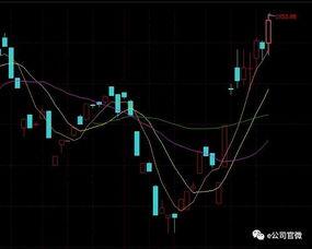 维生素板块股票有哪些?