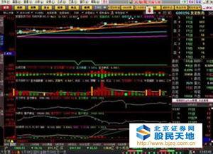 什么股票看盘软件可以看全景图?