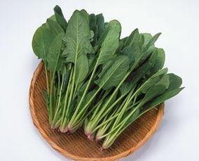 菠菜嘌呤高吗(菠菜含漂呤高吗?)