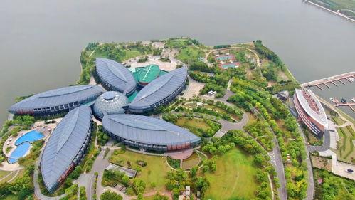 国际锐评中国外贸再创新高给全球经济注入稳定力量