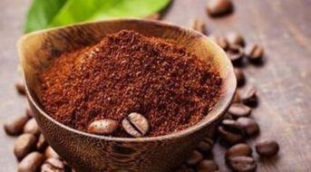新鲜的咖啡粉养花