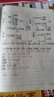 关于汉字的知识200字作文(关于汉字的资料200字)