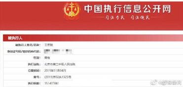 中国执行信息公开网查询(什么是失信被执行人,怎么查找相关信息?)